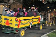 Holiday Horse Carriage Ride